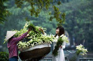 Travel to Hanoi